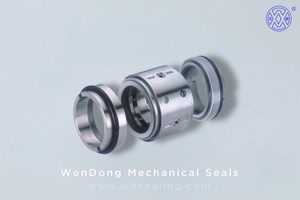 Double Acting Mechanical Seal WM5ED
