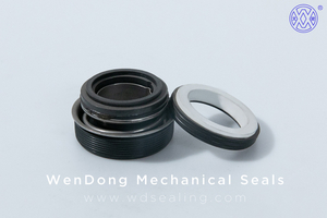 China Mechanical Pump Seals WM FT/SB