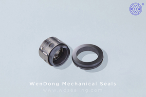 Mechanical Seal WM8U8T
